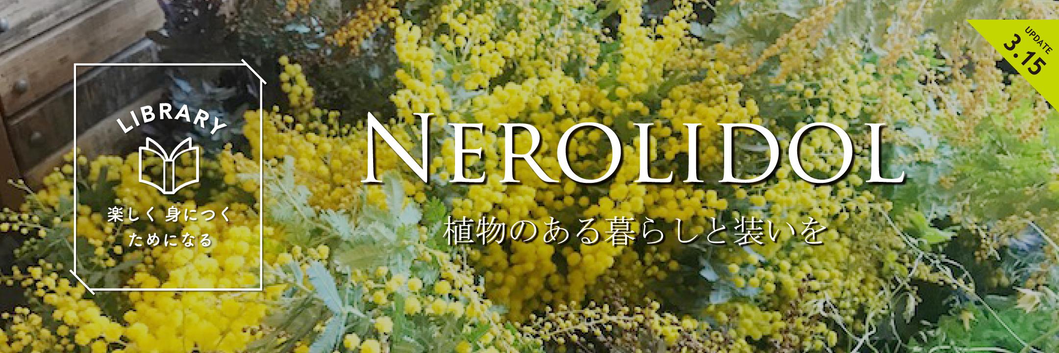 NEROLIDOL7
