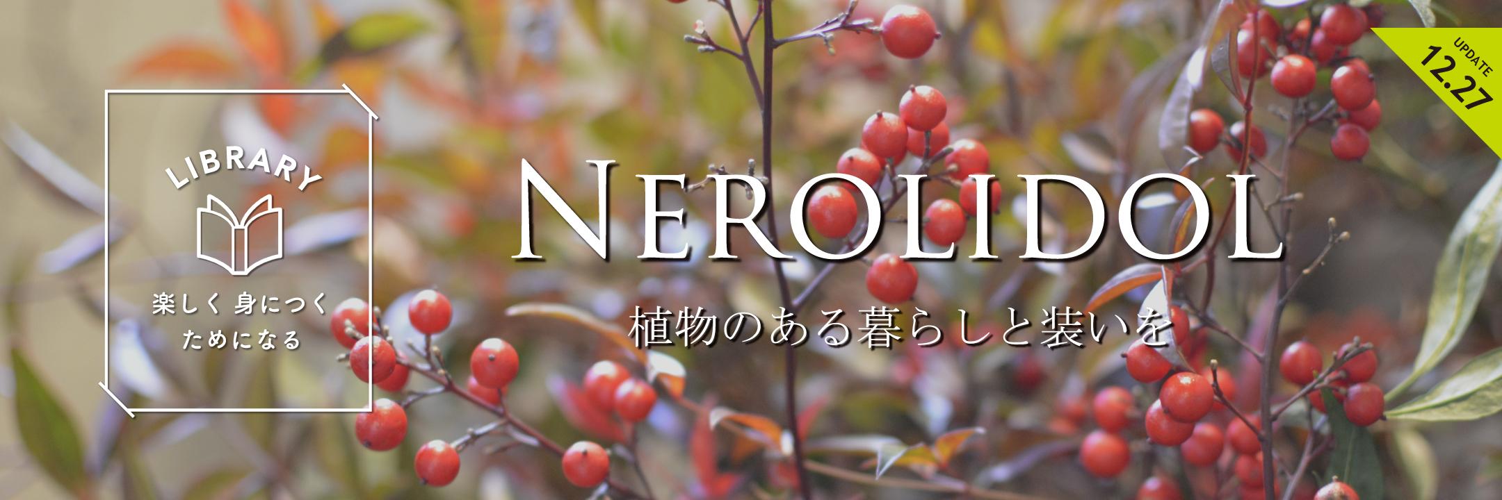 NEROLIDOL12